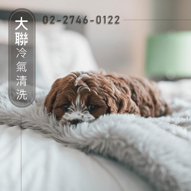台北東元冷氣清潔::大聯專業冷氣清洗-更換冷氣濾網的重要性